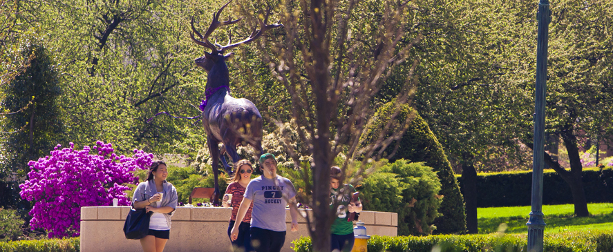 Image of Fairfield University students in front of Lucas the Stag mascot statue