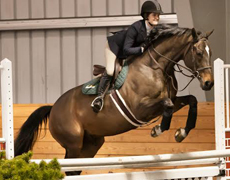 Image: Equestrian team