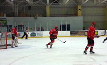rec_mice_hockey13d