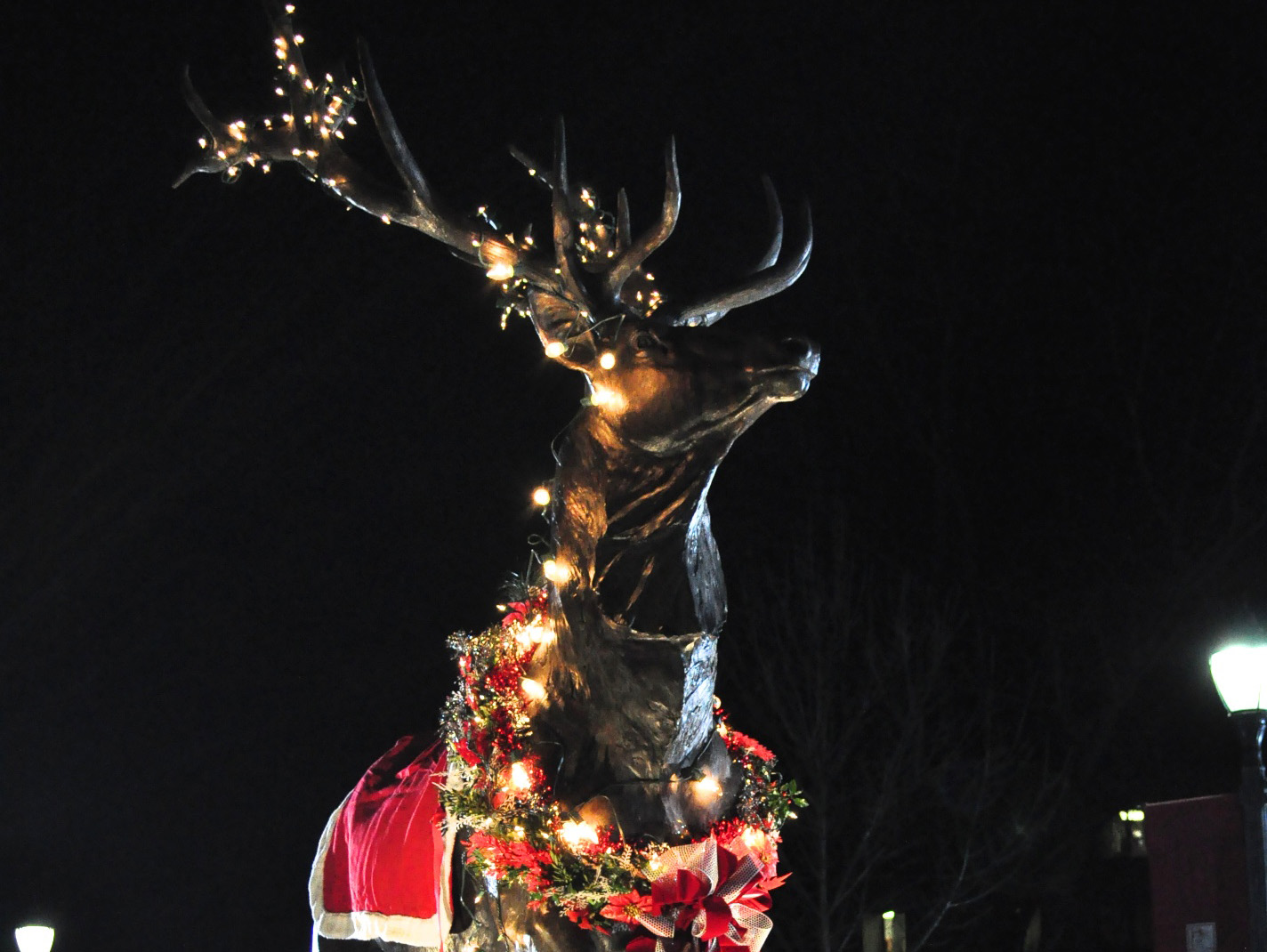 Stag statue with Christmas lights