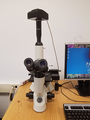 11661_soe_labs_metallurical-microscope_07312018