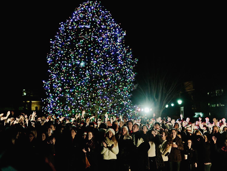 Hundreds Attend Tree Lighting Ceremony